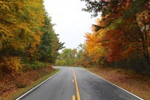 Shenandoah fall foliage