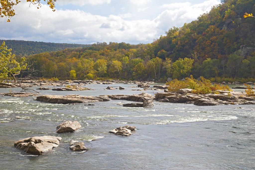 Fishing the Shenandoah River