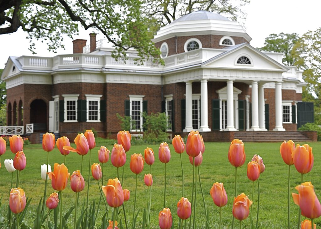 Monticello with tulips in foreground