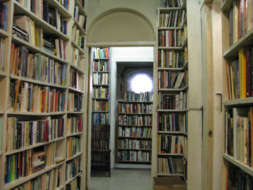 image of bookshelves at Daedalus Bookstore