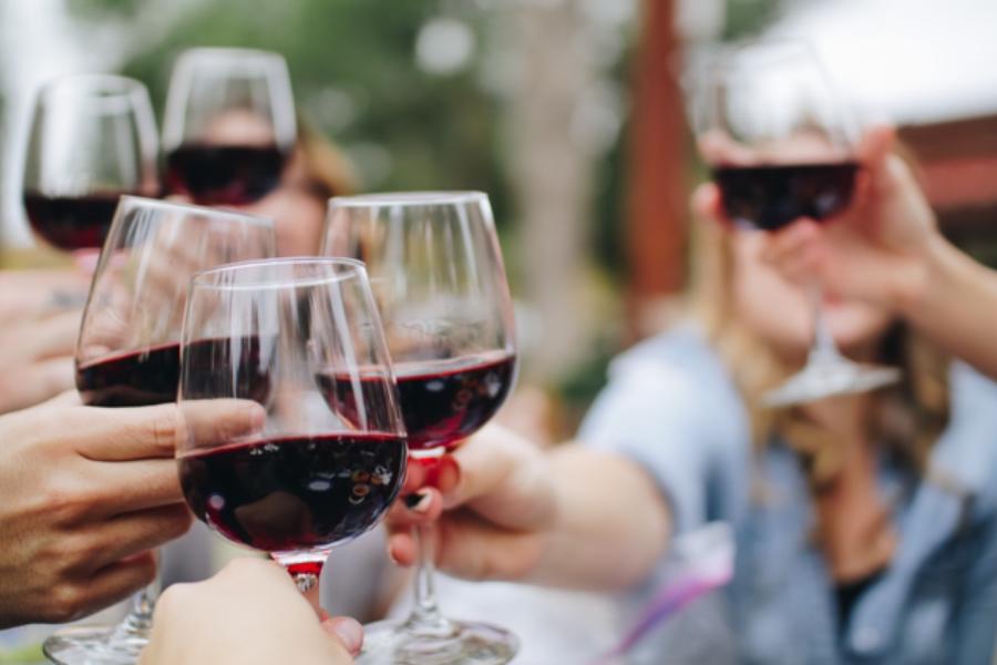 People cheering wine glasses during their virginia wine package tour