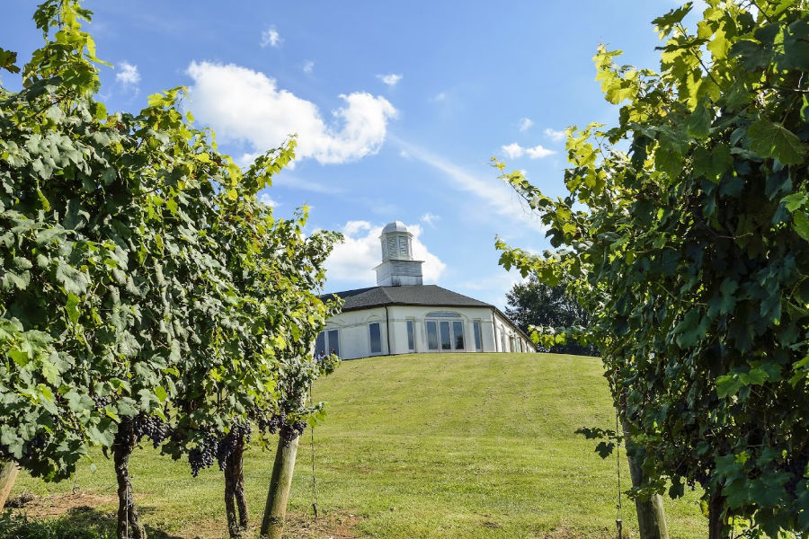 Barboursville winery - great lunch spot of Charlottesville history tours