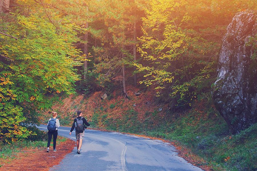 Stunning fall foliage in Virginia