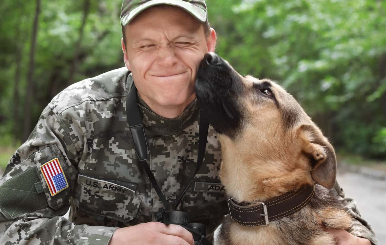 Man in U.S. Army camouflage holding a German Shepard