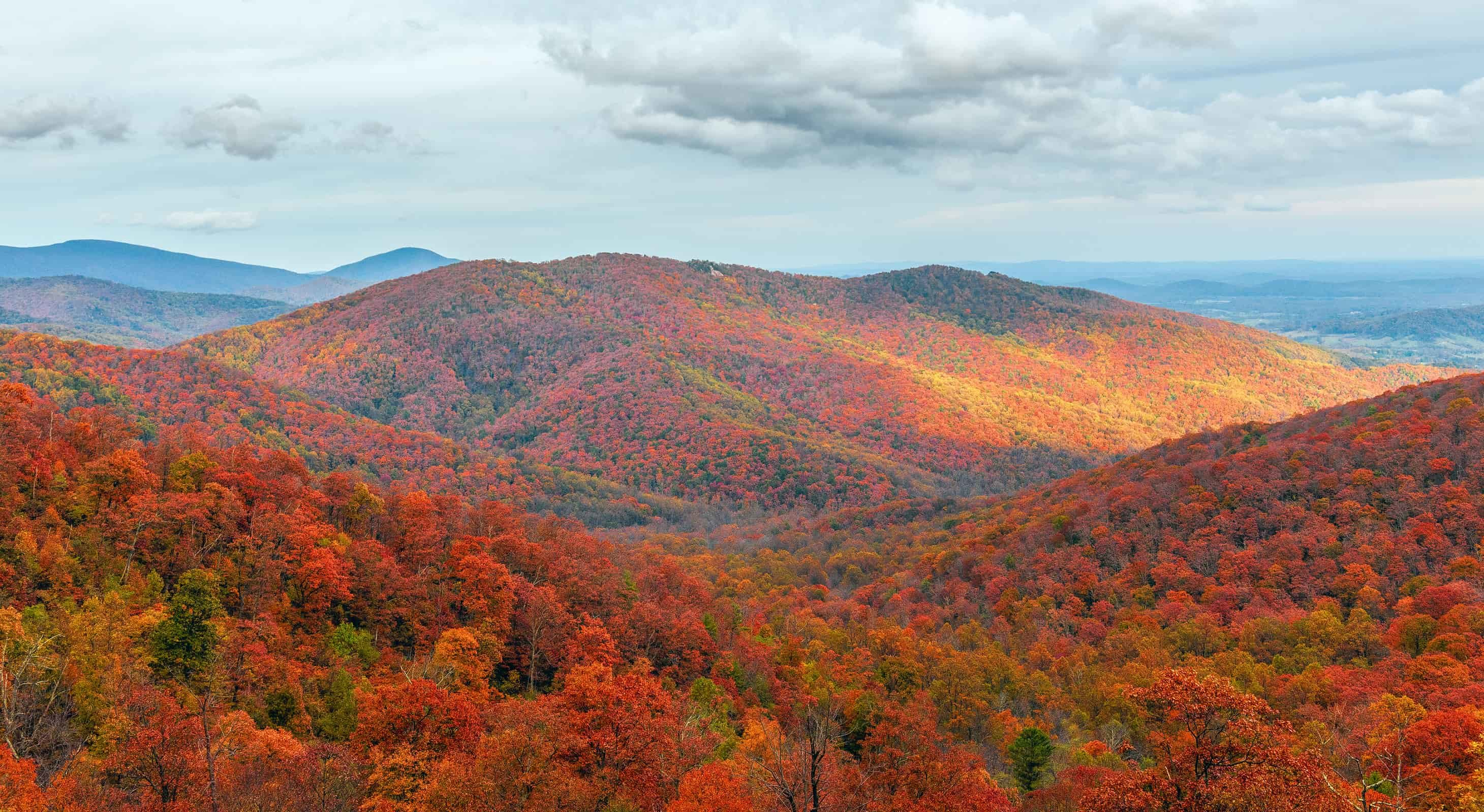 Fall foliage in Shenandoah National Park